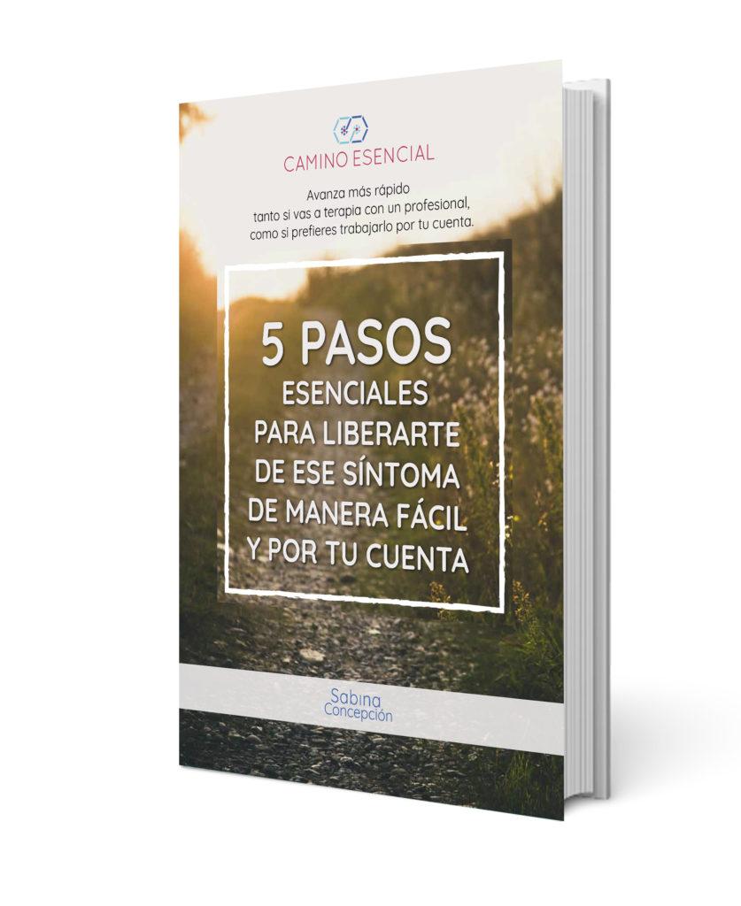 Descargate gratis 5 pasos esenciales